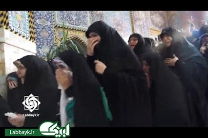 کلیپ دیدنی از اولین تشرف دانشگاهیان به حرم امام حسین(ع)