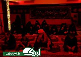 الوداع ای امام مهربانیها/دانشگاهیان با کربلای معلی وداع کردند