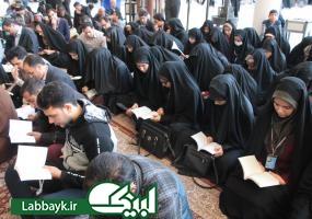 هفت کاروان دانشجویی با پای دل وارد شهر نجف اشرف شدند